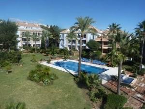 One of the pools and communal gardens at La Perla de la Bahia